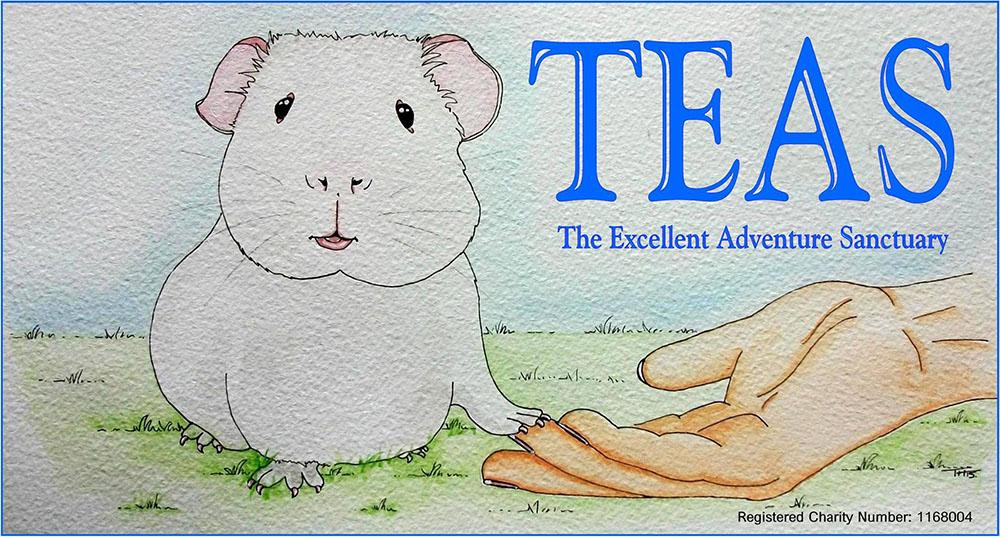 The Excellent Adventure Sanctuary TEAS